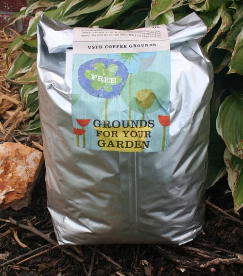 Starbucks Grounds For Your Garden