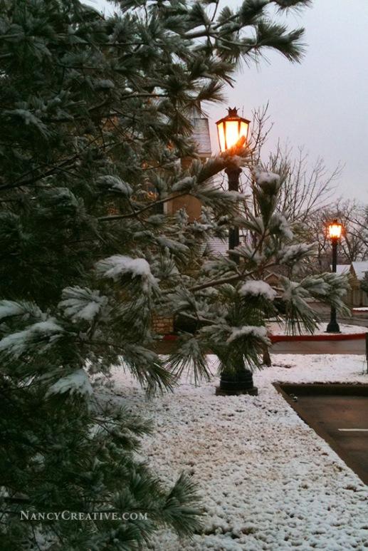 Winter Light @ NancyC
