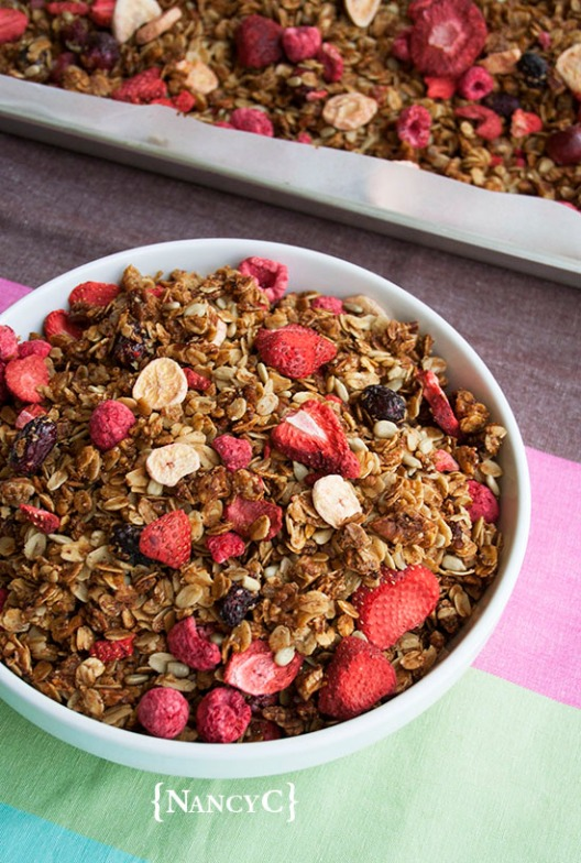 mixed-fruit-granola-nancyc