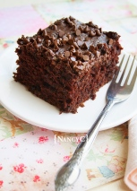 Chocolate Zucchini Snack Cake @ NancyC
